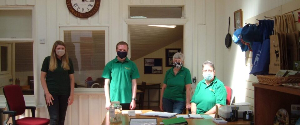Volunteers Wearing Masks